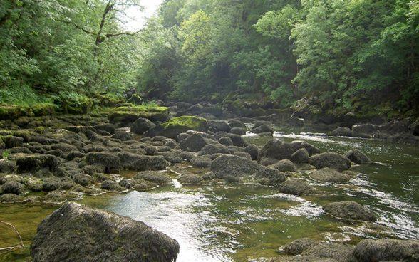 Acqua - Letto di un fiume ...